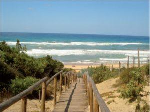 Sabaudia Beach