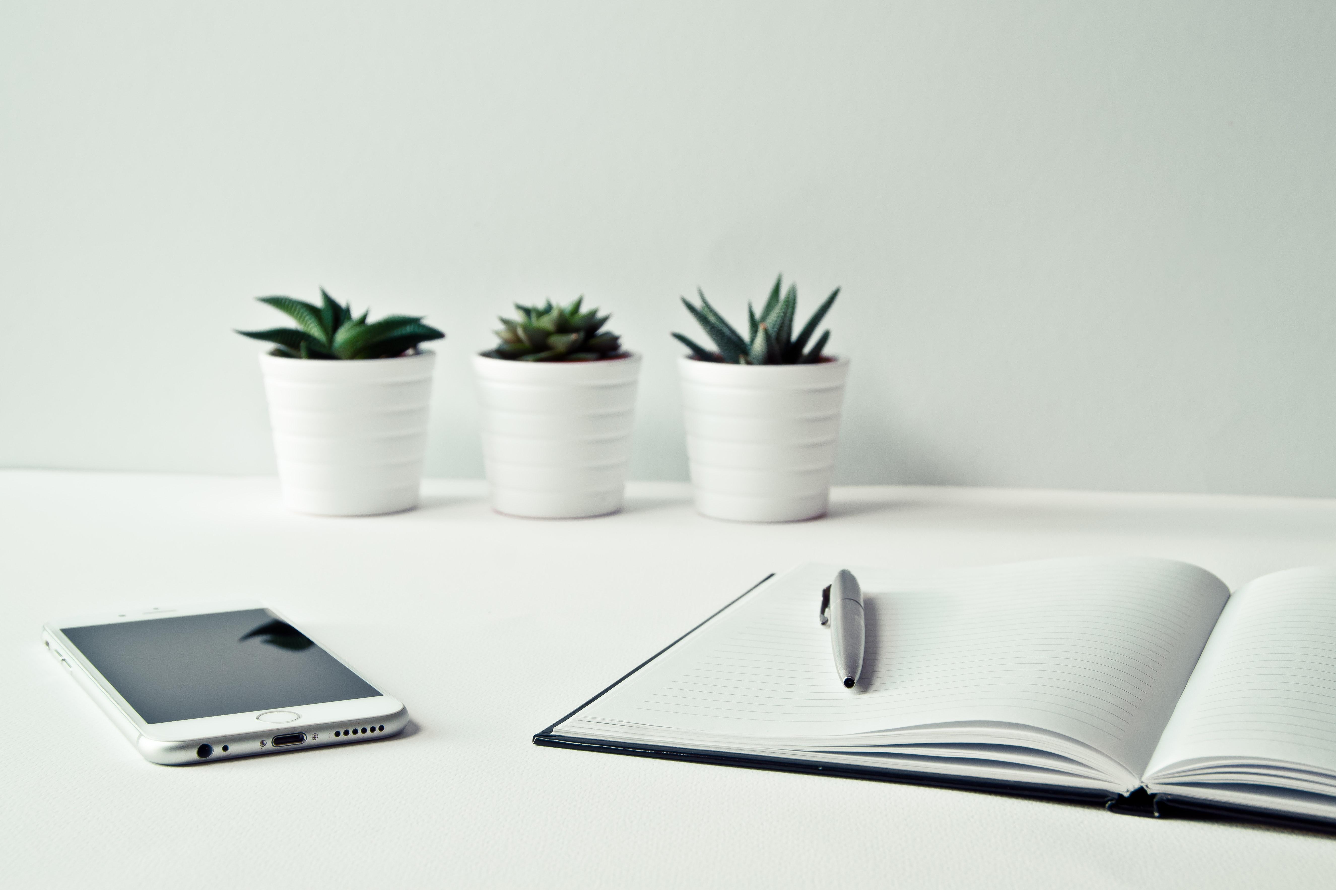 computer and three plants